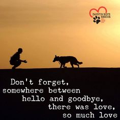 Dog Quotes Love, Pet Remembrance, Bow Wow, Rottweilers, Dog Signs, Kato, Dog Photography, German Shepherd Dogs, Beautiful Soul