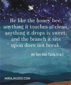 Be like the honey bee. Hazrat Ali Sayings, Imam Ali Quotes, Ali Bin Abi Thalib, English Quotes, Islamic Quotes, Bee, Instagram Posts, Honey, Honey Bees