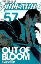 Ichigo Kurosaki non é un rapaz de quince anos normal e corrente... pode ver espíritos e ten un contacto innato co alén, o que tirará proveito tras coñecer un shinigami (anxo da morte) que lle proporciona unha espada a xogo coas súas habilidades.
