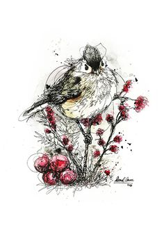 """Check out my @Behance project: """"""""Scribble Bird Series"""" Ink & Watercolour on paper"""" https://www.behance.net/gallery/46886669/Scribble-Bird-Series-Ink-Watercolour-on-paper"""