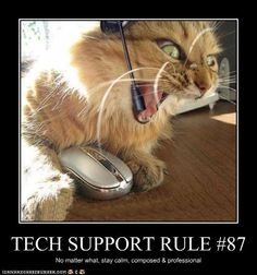 Tech Support Rule #87:  No matter what, stay calm, composed, and professional.