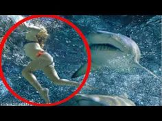 SHARK ATTACK!! Women Eaten Alive By Shark