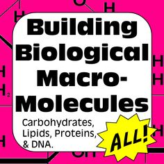 Macromolecule Biochemistry Activity for AP/High School Biology Distance Learning Secondary School Science, High School Biology, Biology Teacher, Ap Biology, Teaching Biology, Teaching Resources, Dna, Science Lessons, Science Fair