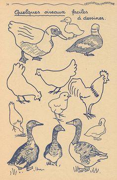 Canards (ahem, ducks).