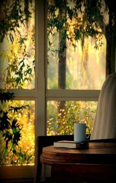 Nature l Sunlight l Window view l Tea l Book l Amen. Chillout Zone, Window View, Through The Window, Beautiful Morning, Beautiful Sunrise, Jolie Photo, Interior Exterior, Simple Pleasures, Country Life