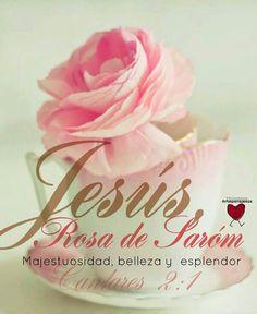 Jesús invencible y poderoso