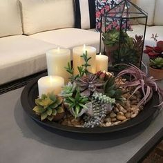 Dining room centerpieces: Find out how you can elevate your dining room table decorations with these centerpieces. Faux Succulents, Succulents Garden, Succulent Terrarium, Terrarium Ideas, Succulent Bowls, Succulent Landscaping, Flowers Garden, Landscaping Ideas, Dining Room Table Decor
