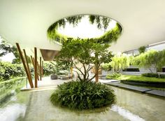 Singapore Willow House 3