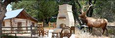 Cabin Fredericksburg Texas, Texas Cabin Vacation, Texas Vacation Rental Cabin