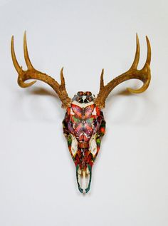 Botanical Butterfly Whitetail Deer Skull Taxidermy by Myranda Escamilla Deer Skull Art, Deer Skulls, Skull Decor, Cow Skull, Skull Head, Animal Skulls, Deer Mounts, Antler Art, Skull Painting