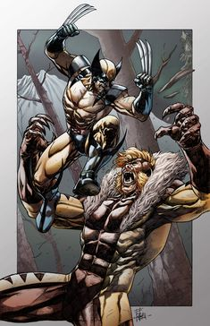 Wolverine vs Sabretooth by h4125.deviantart.com on @deviantART