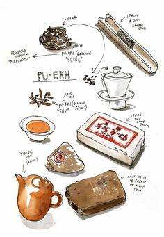 A lesson in Pu-erh from tea guy Sebastian Beckwith. Cooking Icon, Tea Illustration, Pinterest Instagram, Best Green Tea, Food Sketch, Pu Erh Tea, Watercolor Food, Food Painting, Cuppa Tea