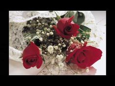Všetko najlepšie - YouTube No One Loves Me, Flower Pictures, Flowers Pics, Amazing Flowers, Red Roses, Tea Party, Christmas Wreaths, Gift Wrapping, Valentines