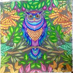 The Owl From Secret Garden By Johanna Basford Used Pencils Markers For Background
