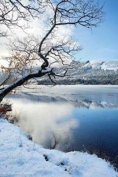 Loch Chon , The Trossachs
