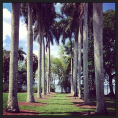 Edison & ford winter estates #edisonfordfl #leecounty #lovefl