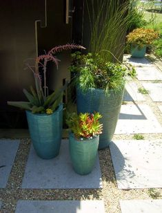 Cluster of planters on paver and gravel edging.