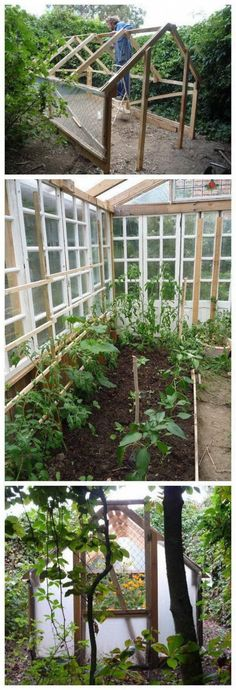 Homemade Low Cost Glass Greenhouse from Recuperated Windows and Pallet Wood. #greenhouseplansdiy #greenhouseplanshomemade #shedplans Greenhouse Kitchen, Cheap Greenhouse, Indoor Greenhouse, Backyard Greenhouse, Greenhouse Growing, Greenhouse Wedding, Greenhouse Plans, Homemade Greenhouse, Portable Greenhouse