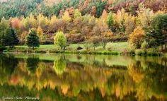 Afbeeldingsresultaat voor herfstbeelden