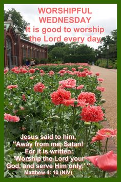 Wednesday Greetings, Blessed Wednesday, Morning Greetings Quotes, Worship The Lord, Monday Friday, Jesus Quotes, Quote Of The Day, Blessings, Wisdom