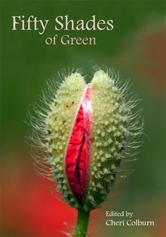 Fifty Shades of Green includes my story 'Lady Sally Rudston Chichester and the Walled Garden' (Greenwoman Publishing 2014)