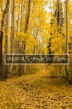 Aspen is an incredible basecamp for unlimited outdoor adventure. Learn how to live it up in this classic mountain town with this local& guide to Aspen. Aspen Colorado, Colorado Hiking, Colorado Mountains, Colorado Springs, Aspen Snowmass, Dream Vacations, Vegas Vacation, Dream Trips, Travel Usa