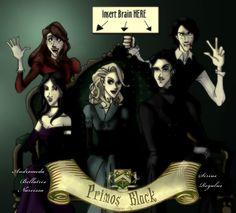 Andromda, Bellatrix and Narcissa. Sirius and Regulus. The Black cousins.