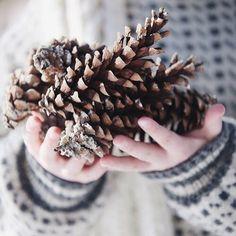 Falling into Winter - Ana Rosa Winter Love, Winter Day, Winter Is Coming, Winter Snow, Winter Season, Cozy Winter, Winter Cabin, Winter Bride, Winter Colors