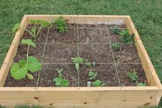 How to Build A Square Foot Garden - Box 2 Planted by Sisters Raising Sisters,