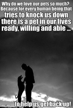Shelterdoggies.com's thought for the day