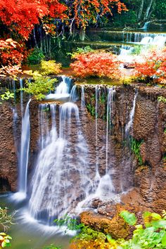 Daily Challenge for October Share 2 topics you would like to learn more about. Fall Backgrounds Iphone, Iphone Wallpaper Fall, Best Iphone Wallpapers, Nature Wallpaper, Wallpaper Ideas, Mini Waterfall, Waterfall Wallpaper, Autumn Nature, Autumn Fall