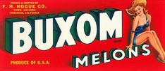 Original vintage melon crate label Buxom Country Girl Pin Up Yuma Arizona Fruit Box, Apple Fruit, Vintage Labels, Vintage Ads, Vintage Postcards, Vintage Signs, Vintage Packaging, Vintage Food, Yuma Arizona
