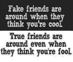 """""""Fake friends are around when they thing you're cool. True friends are around even when they think you're fool."""""""