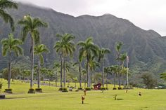 Valley of the Temples, North Shore, Oahu