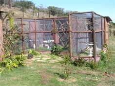Easy to Make Outdoor Bird Aviary: