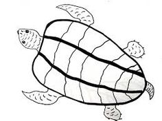 how-to-draw-a-whale-shark-whale-shark-step-6_1