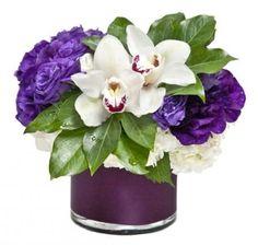 Sugarplum - Floral Art