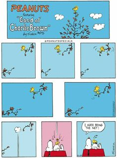 #peanutsspecials #ps #peanuts #schulz #goodolcharliebrown #snoopy #woodstock #net