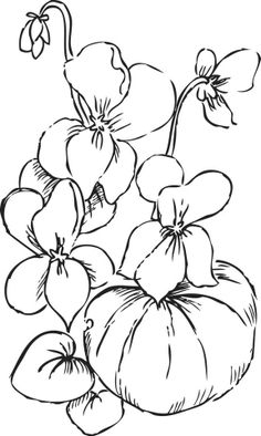 Many Vegetables Contain Fiber Coloring Page