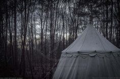 Bell tents in the woods