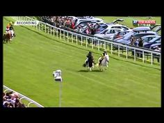 Video: This shetland pony race from Bath racecourse is one of the strangest…