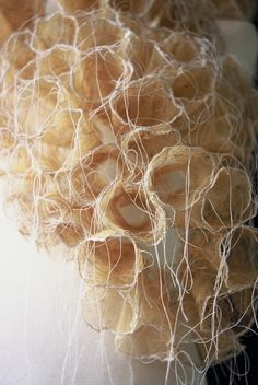 "Makiko Wakisaka, ""life"" - leaf vein, nylon thread, polyester thread, water soluble c. Textile Texture, Textile Fiber Art, Fabric Textures, Inspiration Artistique, Textiles Techniques, Paperclay, Fabric Manipulation, Soft Sculpture, Art Festival"