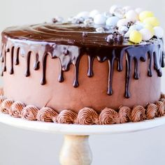 Whether you crave lemon, carrot cake, cheesecake, or something chocolate - this collection of recipes is all you need to plan Easter dessert! Brownie Mix Cookies, Chocolate Dipped Cookies, Coconut Cheesecake, Cheesecake Cake, Chocolate Cheesecake, Easy Easter Desserts, Spring Desserts, Parfait Desserts, Pudding Desserts