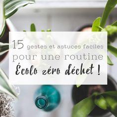 15 gestes faciles pour une routine écolo zéro déchet !