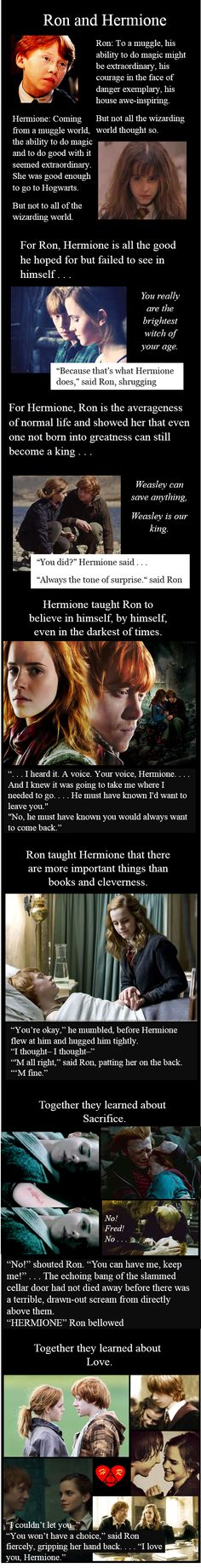 """What about me!"" said Harry. ""Hermione chose Ron and you chose Ginny. Get over it."" ""But I am the chosen one."" *slaps with papers ""What about Dramione?"" whines Malfoy. ""After you called her a mudblood. Not a chance."" ""My father will hear about this!"" *storms angrily away ^^^THIS.<3"