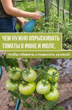 Diet, Vegetables, Food, Backyard Farming, Lawn And Garden, Essen, Vegetable Recipes, Meals, Banting