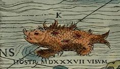 Can You Spot all the Sea Monsters in this 16th-Century Map? | Atlas Obscura
