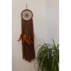 Large Dream Catcher Brown Crochet Dreamcatcher Boho Dream Catcher Wall... ($20) ❤ liked on Polyvore featuring home, home decor, grey, home & living, home décor and wall décor
