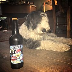 Arcade Brewery Mega Milk -- Oatmeal milk stout... Very tasty. Excellent with turkey leftovers. Sheepdog approved!
