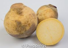 Rutabaga / Swede / Swedish Turnip / Yellow Turnip :: Search by flavors, find similar varieties and discover new uses for ingredients @ preppings.com
